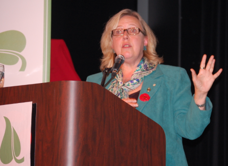 Federal Green Party leader Elizabeth May address P.E.I. Green Party members at the Green Party leadership convention on Nov. 2. Geordie Carragher photo.